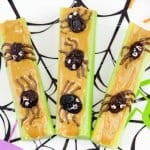 Three pieces of celery sit on a spider web plate covered in peanut butter. Each piece of celery is topped with raisins made to look like spiders with chocolate legs and eyes.