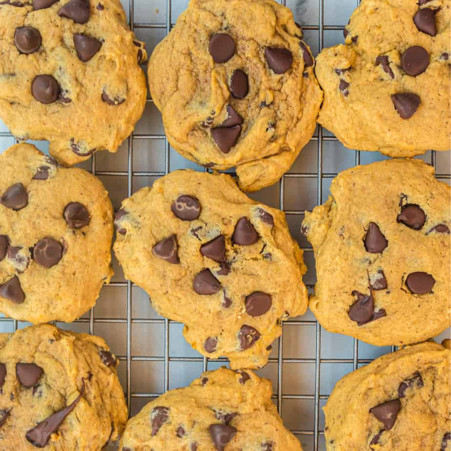 pumpkin chocolate chip cookies from overhead on a metal cooling rack